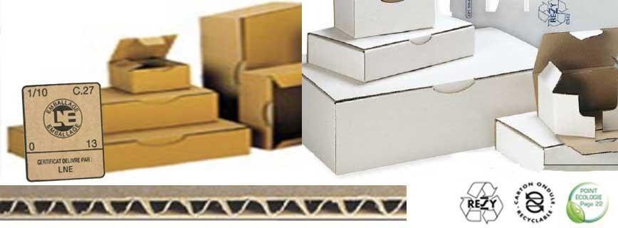 Carton envoi postal
